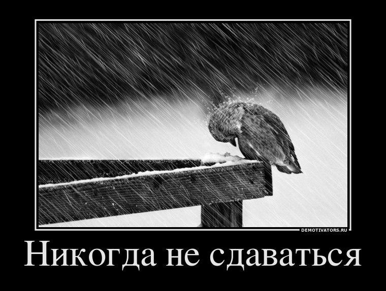 Начался дождь батрутдинов и даша после шоу душе