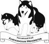 Российский Клуб Аляскинских Маламутов (РКАМ)