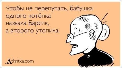 http://cs10706.userapi.com/v10706569/d71/BuiaC7yG6lY.jpg