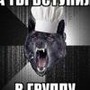 Типичный Волк