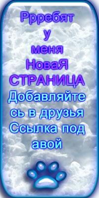 Сергей Исакин, 4 июня 1990, Симферополь, id53277906
