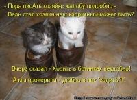 Дмитрий Садыков, 5 июля 1998, Москва, id147614015
