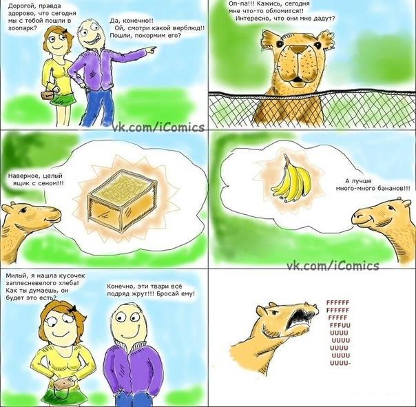 Комиксы fffuuu! - Страница 3 X_9e0b1864