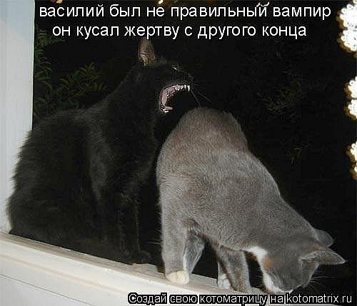 http://cs10752.vkontakte.ru/u5376149/97602866/x_f87763d8.jpg