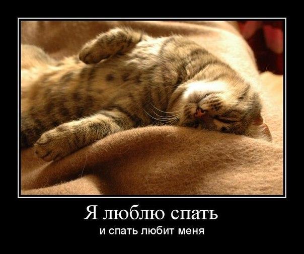 Прикольные картинки люблю поспать, узбекском паинт открытки