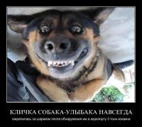 Сабина Мошка, 9 ноября 1994, Киев, id147216364