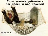 Андрей Алексеич, 27 января 1993, Волгоград, id127018640
