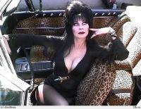 Elvira Lordofdark, 28 января , Москва, id106890345