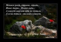 Анна Соломатова