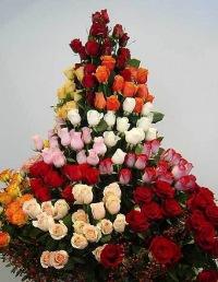 Mehpare İsmayilova, 27 апреля 1974, Заводоуковск, id134895718