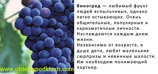 Обрезка винограда, уход за виноградом,рецепт приготовления вина. X_487e5c02