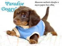 Doggy Paradise, 28 сентября 1994, Витебск, id171470397