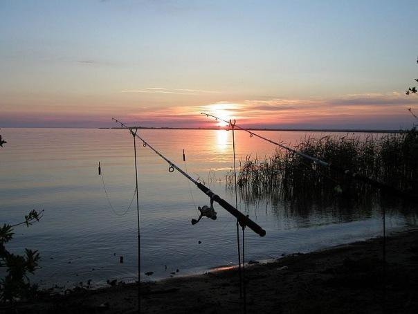 рыбалка на озере ладожском озере видео