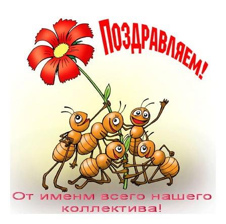 http://cs10815.vkontakte.ru/u48706592/-5/x_be1ea43a.jpg