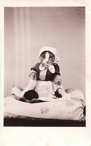 Винтажные кошки (47 фот)