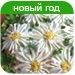 http://ovkuse.ru/id/16580/