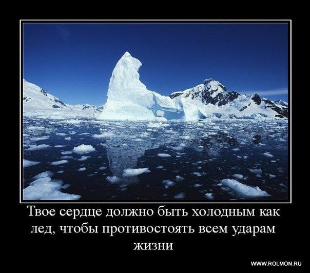 Кирилл Бадаев | Москва