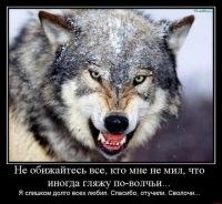 Дмитрий Коченев, 22 июля 1993, Астрахань, id152568775