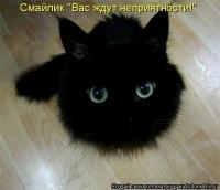 Денис Воробьёв, 3 ноября 1998, Санкт-Петербург, id141877376
