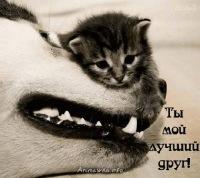 Просто Ириша, 29 ноября , Ханты-Мансийск, id177064782