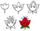 как нарисовать цветок - цветы.