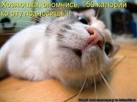 Роман Сафонов, 19 июня , Москва, id75174966