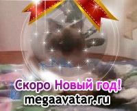 Таня Попова, 25 января , Екатеринбург, id99137365