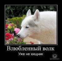 Vbif Nest, 11 мая , Москва, id157657312
