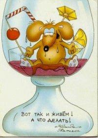 Виктор Белёвцев, 31 августа 1982, Уфа, id5789847