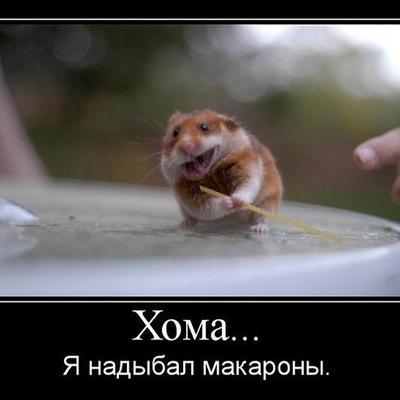 Миша Кузьменко, 11 сентября , Симферополь, id184965659