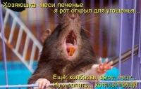 Nnnn Nnnn, 30 июня 1988, Калининград, id117552467