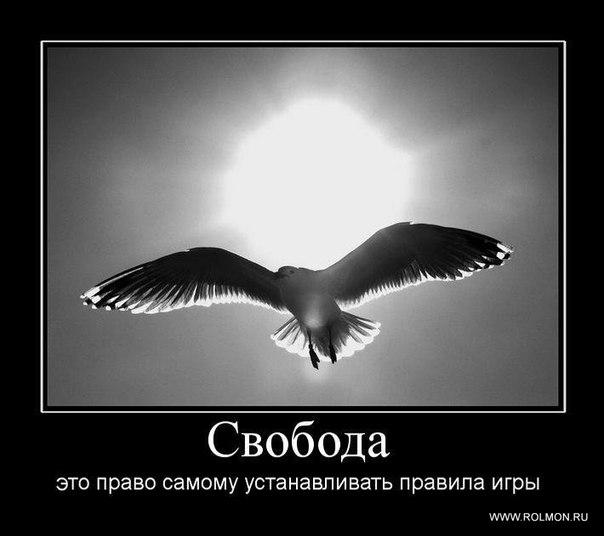 https://pp.vk.me/c10865/v10865558/18d1/ymx2Jw7FXkA.jpg
