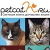 petcat.ru - Светская жизнь домашних кошек
