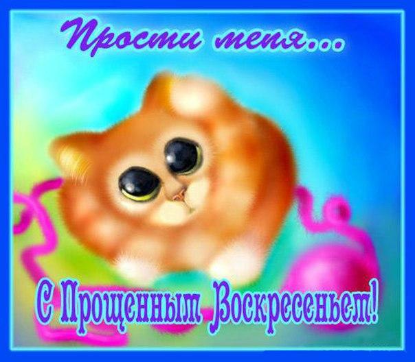 http://cs10880.userapi.com/u36001421/-5/x_80dec701.jpg