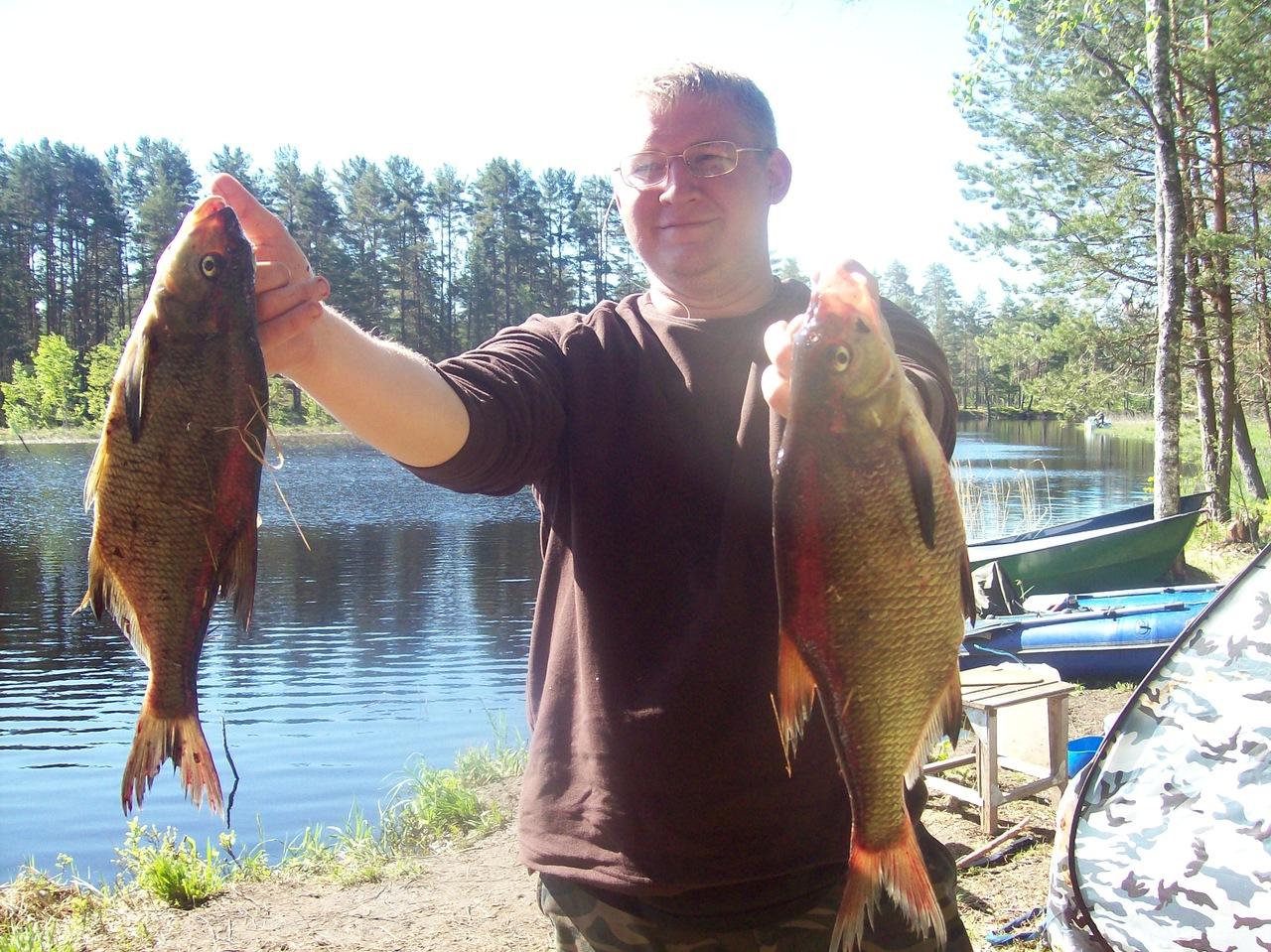 рыбалка дикарями на селигере