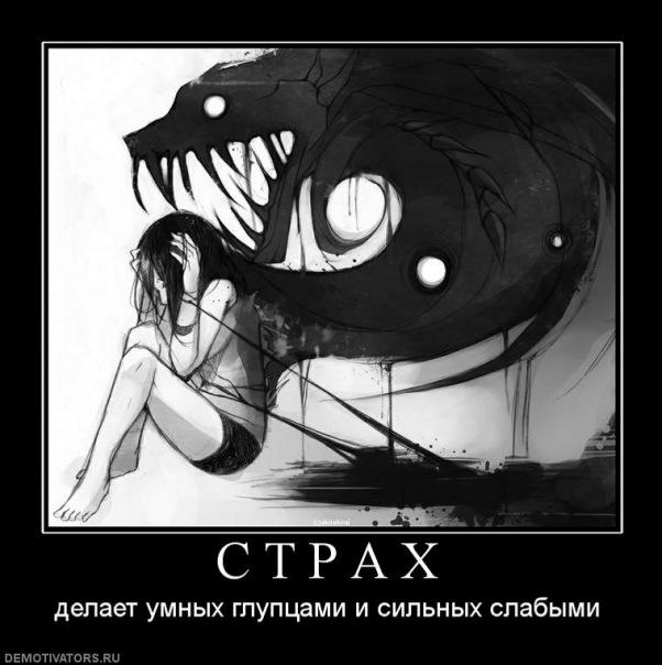 http://cs10901.vkontakte.ru/u41307074/101053298/x_682809cc.jpg