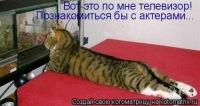 Некита Незнайкин, 3 марта 1998, Тайшет, id156770852
