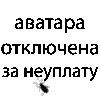 Толик Бойко, 18 января , Херсон, id35219675