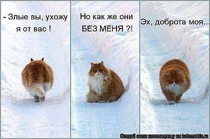 http://cs10911.vkontakte.ru/u6806775/96634425/x_ce98b5be.jpg