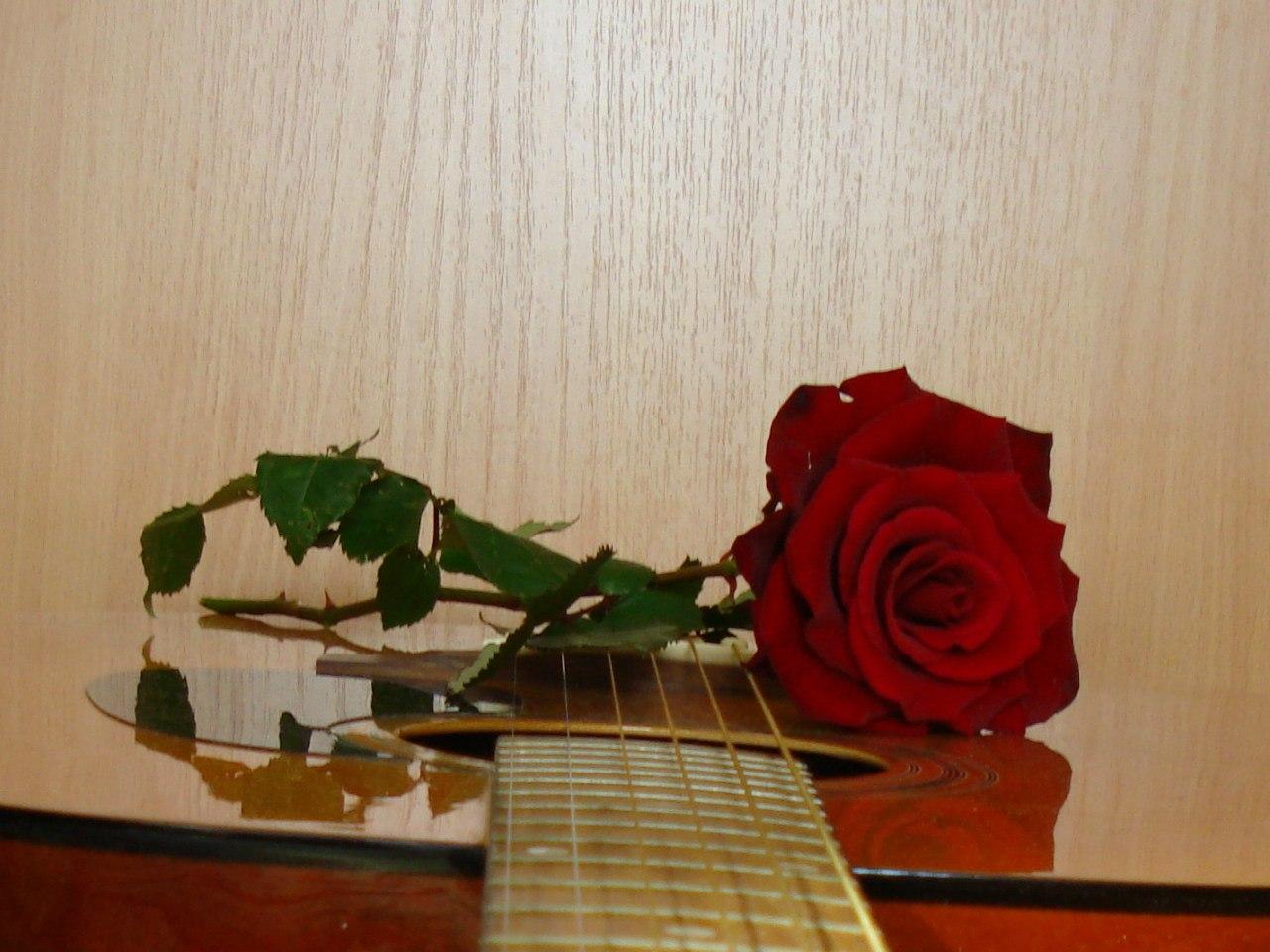 http://cs10911.vk.me/u8605393/150550540/z_4433e32c.jpg
