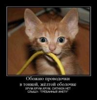 ха-ха смешно | ВКонтакте