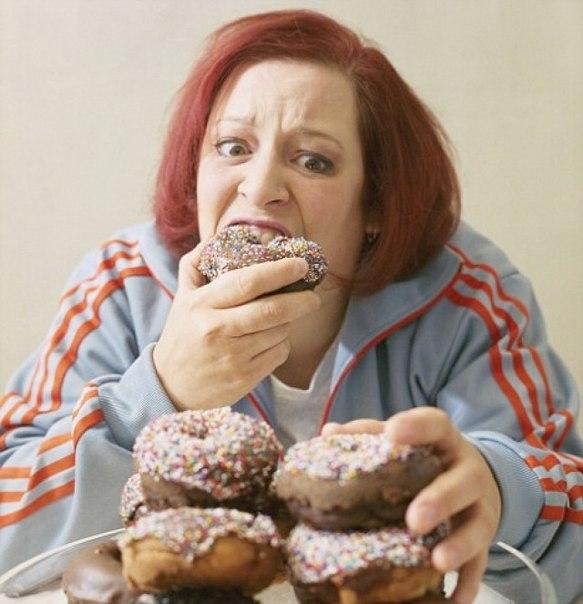 Похудеть на 5 кг диета отзывы