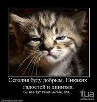 Змеёнышь Гадёнышь, 19 декабря 1991, Саратов, id90669585
