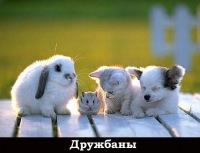 Наталья Мартыненко, 29 апреля , Железноводск, id144493393