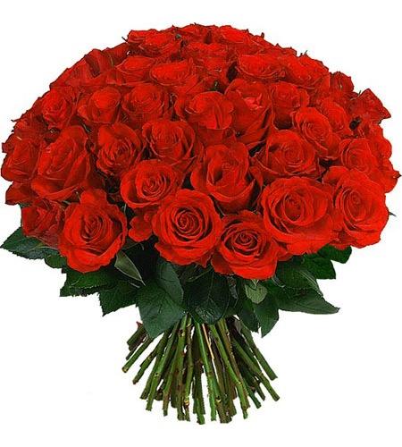 9 мар в 14:46.  Спасибо, очень красивые розы!