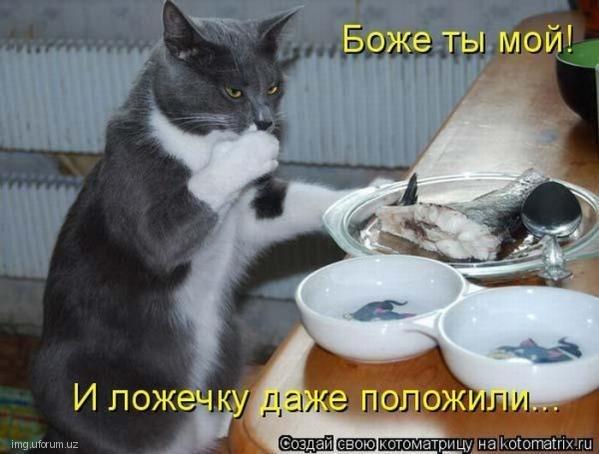 http://cs10928.vk.me/v10928953/7b9/iDlv2ugSvek.jpg