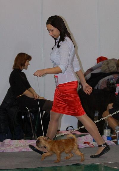 Хендлер Светлана Степанова (Новосибирск) X_6dc90df3