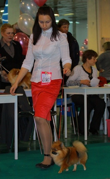 Хендлер Светлана Степанова (Новосибирск) X_c564fe04