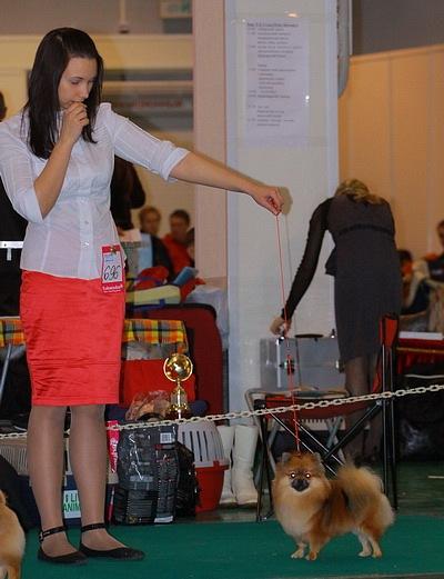 Хендлер Светлана Степанова (Новосибирск) X_f4ed9911