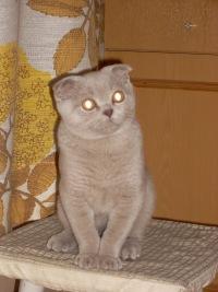 Надежда Макарова, 27 июля 1999, Санкт-Петербург, id163659400